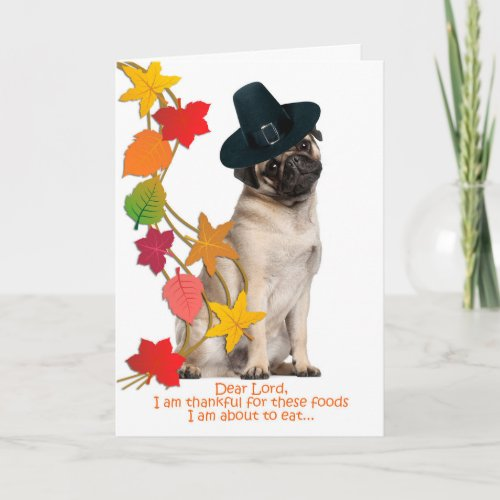 Funny Pug Thanksgiving Card