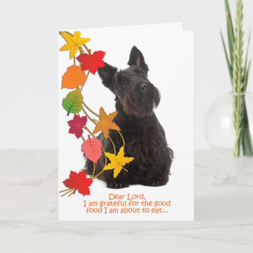 Funny Scottie Thanksgiving Card