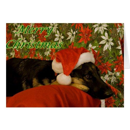 German Shepherd Christmas Card II Zazzle