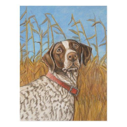 German Shorthair Pointer Dog Art Postcard