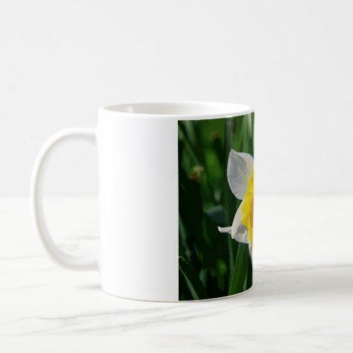 Giant Daffodil mug