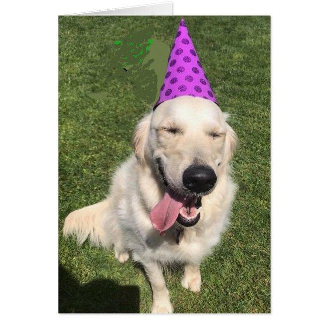 Golden Retriever in Party Hat Happy Birthday Greet Card
