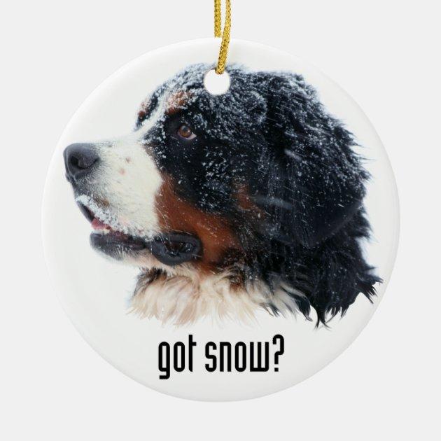 Got Snow Bernese Mountain Dog Ceramic Ornament