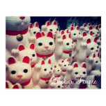 Gotokuji Temple's Maneki Neko Lucky Cats Postcard