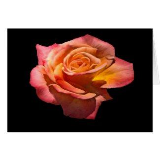 Granada Tea Rose Card card