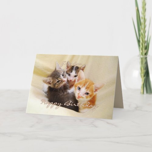 Grandpa Happy Birthday Trio of Kittens card
