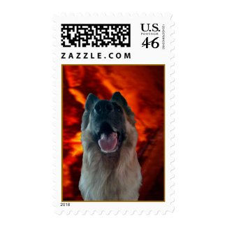Granite Background For Your Pet Postage