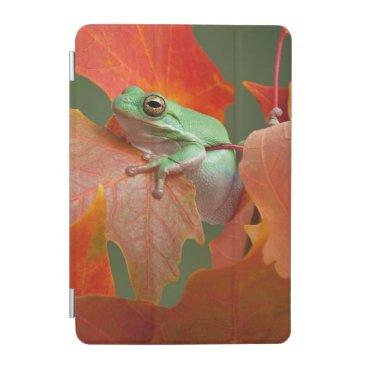 Green Tree Frog In Fall iPad Mini Cover