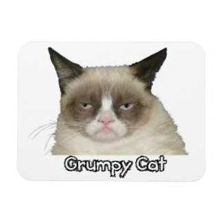 Grumpy Cat 3x4 Flexible Magnet