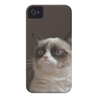 Grumpy Cat Glare Case-Mate iPhone 4 Cases