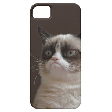 Grumpy Cat Glare iPhone SE/5/5s Case
