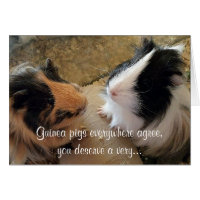Guinea Pigs Birthday Card