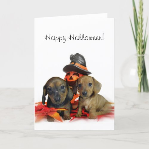 Halloween Dachshund puppies Card