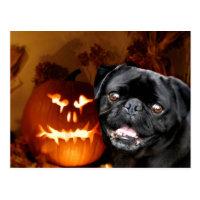 Halloween Pug Dog Postcard