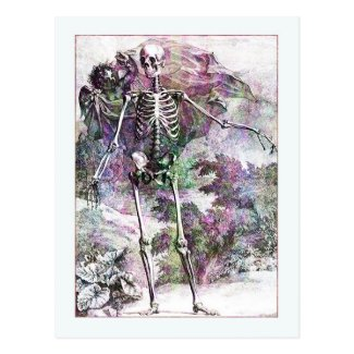 Halloween Skeleton & Cherub Postcard
