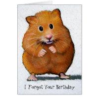 HAMSTER, I Forgot Your Birthday Card