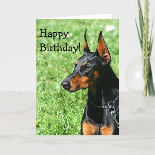 Happy Birthday Doberman Pinscher Greeting Card