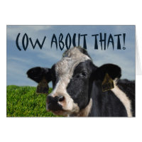 Funny cow birthday cards cat n pet gifts more happy birthday funny dairy cow and pasture card bookmarktalkfo Images