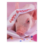 ❤️ Cute Pink Party Pig Birthday Postcard (Also available as a greeting card)