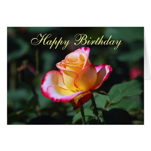 Happy Birthday Red, Yellow and White Rose Card