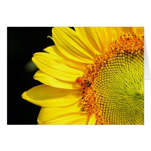 Happy Birthday Sunflower With Honeybee Cards