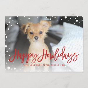 Happy Howlidays Snow Red | Pet Holiday Photo Card
