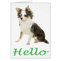 Hello Chihuahua Puppy Dog Blank Notecard