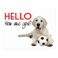 Hello Yellow Labrador Retriever Post Card