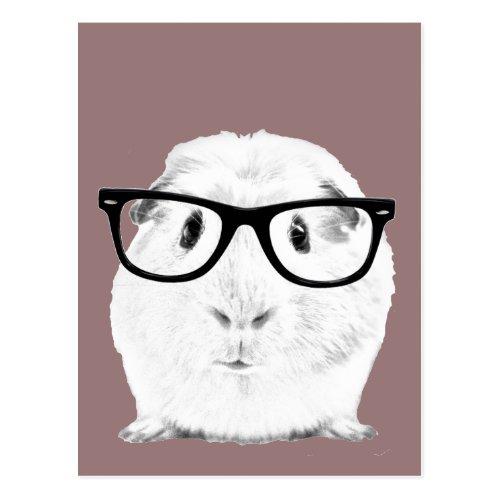 Hipster Pigster Postcard