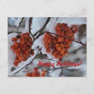 Holiday Berries postcard