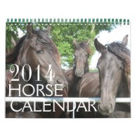 Horse Calendar 2014