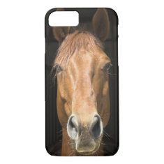 Horse Face Photograph iPhone 7 Case