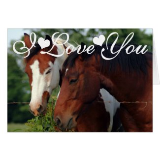 Horses Photograph I Love You Greeting Cards