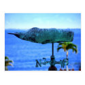 Humpback Whale Weather Vane Post Cards