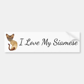 I Love My Siamese Bumper Sticker