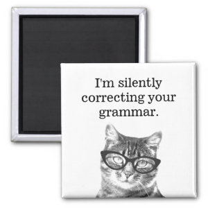 I'm silently correcting your grammar fridge magnet