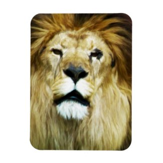 Imperfect King Rectangular Photo Magnet