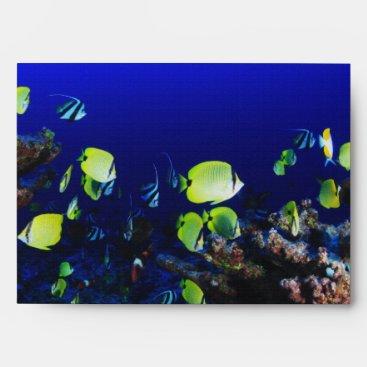 in ocean fish envelope