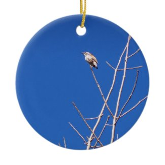 Infant Wood Thrush Ornament ornament