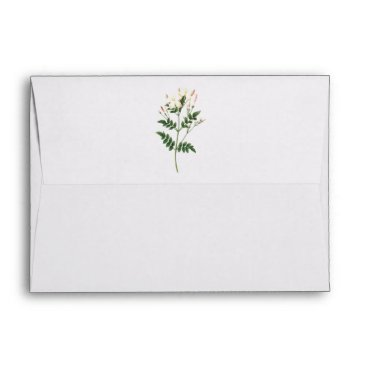 jasmine(Jasminum grandiflorum) by Redouté Envelope