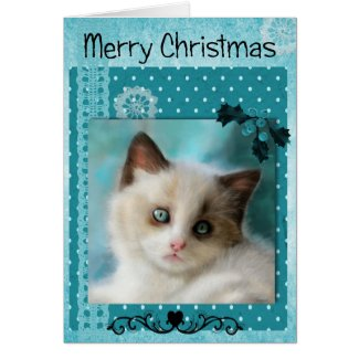 Kitten Christmas Card