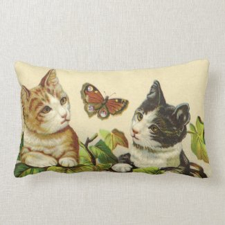 Kittens American MoJo Pillow