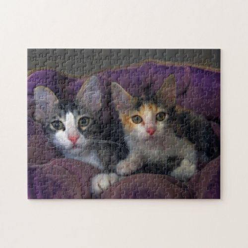 Kittens in a Purple Bed Jigsaw Puzzles