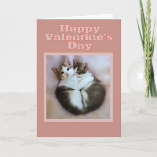 Kittens in Love Happy Valentine's Day card