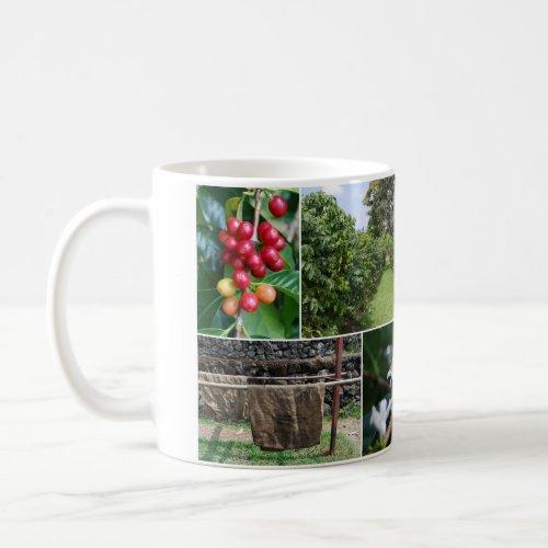 Kona Coffee Plantation Hawaii Collage Mug mug