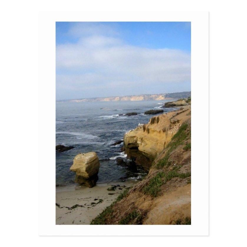 La Jolla Beach Seabirds Custom California Postcard