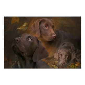 Lab In Autumn Art Poster/Print