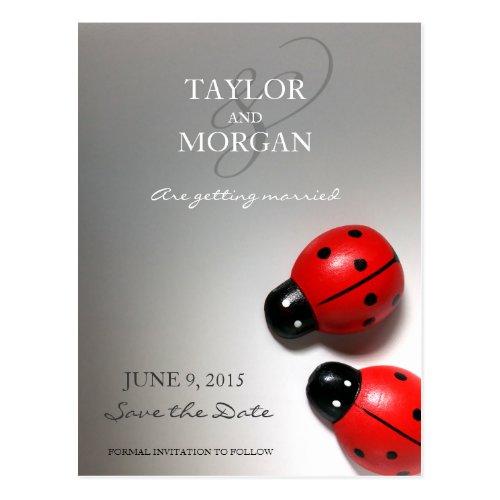 Ladybug Classic Modern Wedding Save the Date Postcard