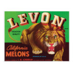 Levon Melons Tiger Los Banos Blythe California Art Postcard