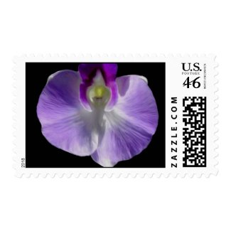 Lilac Orchid Postage stamp